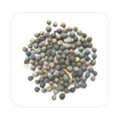 Buy Embelia ribes - False Black Pepper Online MY