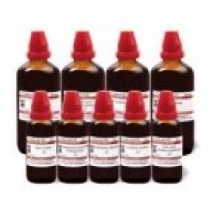 Buy Schwabe Homeopathy Alnus glutinosa MT online United States of America [ USA ]