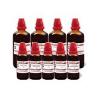 Buy Schwabe Homeopathy Leonurus cardiaca MT online United States of America [ USA ]