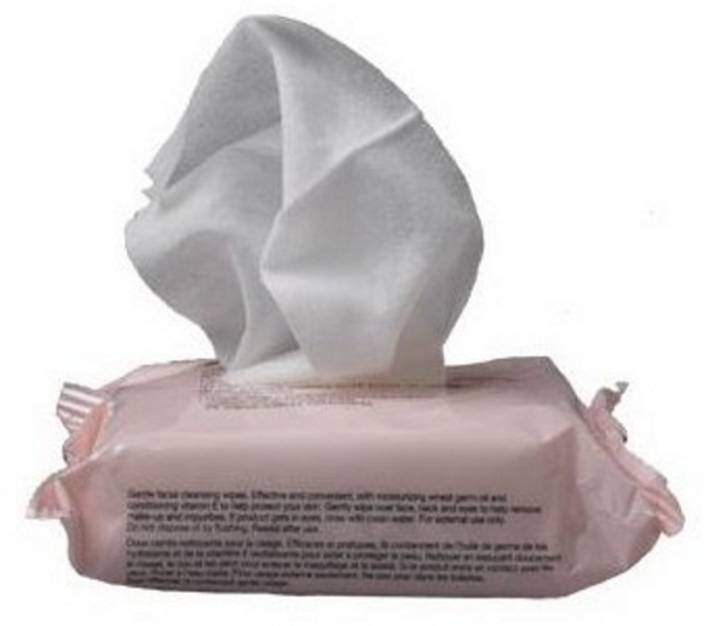 Buy The Body Shop Vitamin E Gentle Facial Cleansing Wipes Online MY