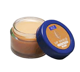 Buy VLCC Lip Shield Cocoa Butter +SPF 10 Online MY