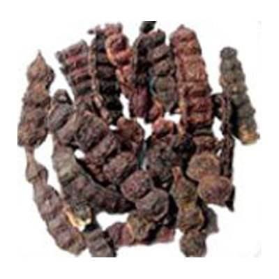 Acacia Concinna Shikakai Buy Acacia Concinna Shikakai Online