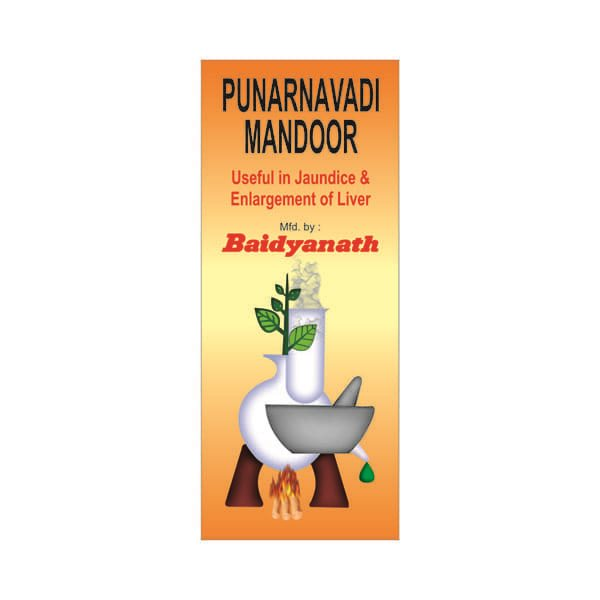 Buy Baidyanath Punarnavadi Mandoor online United States of America [ USA ]