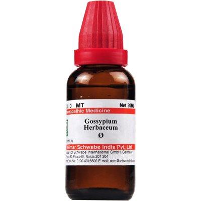 Buy Willmar Schwabe India Gossypium Herbaceum 1X ( Q ) online Nederland [ NL ]