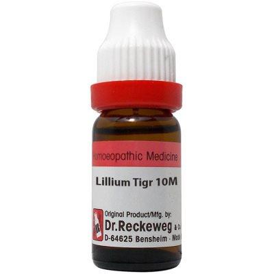Buy Dr. Reckeweg Lillium Tigrinum 10M CH online Australia [ AU ]