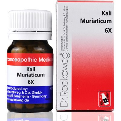 Buy Dr. Reckeweg Kali Muriaticum 6X Tab online Belgium [ BE ]