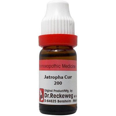 Buy Dr. Reckeweg Jatropha Curcas 200 CH online Nederland [ NL ]
