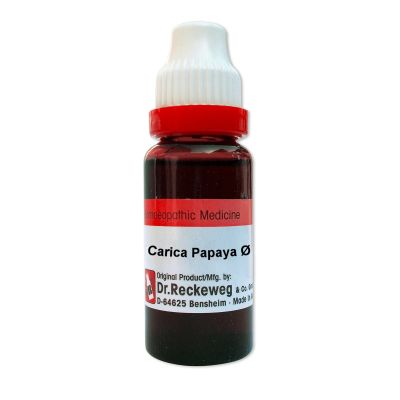 Buy Dr. Reckeweg Carica Papaya Q online Italy [ IT ]