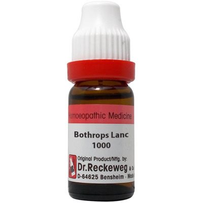 Buy Dr. Reckeweg Bothrops Lanceolatus 1000 CH online United States of America [ USA ]